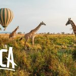 Image Showing An Adventurous and Wild Part of Africa